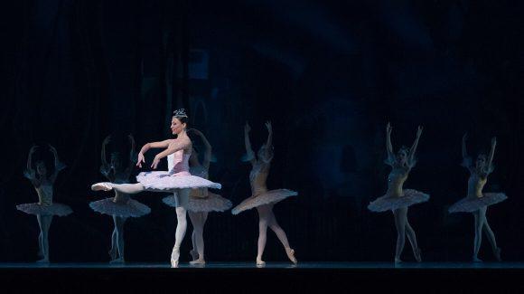 Ballet Show Nutcracker